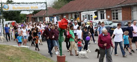 15th Anniversary Buttercup Walk raises over £20,000 with more to come!